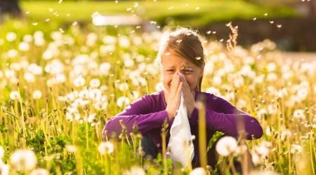 Comment soigner les allergie (soleil, pollen...)