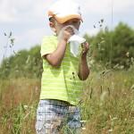 L'allergie, pollens, poils de chat, acariens, soleil, toux, nez, respiration, oeil, toux, asthme, gluten