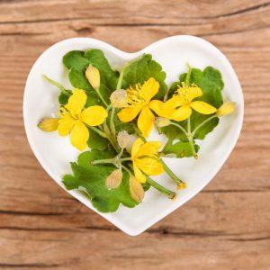Des remèdes naturels contre la crise de foie
