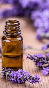 Lavande aspic en aromathérapie